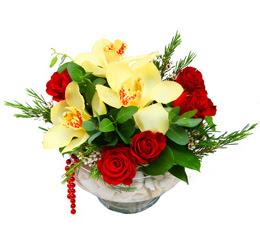 Hakkari çiçek yolla  1 adet orkide 5 adet gül cam yada mikada