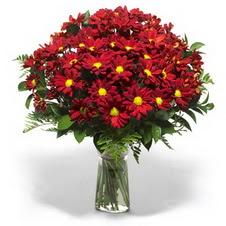 Hakkari çiçek gönderme sitemiz güvenlidir  Kir çiçekleri cam yada mika vazo içinde