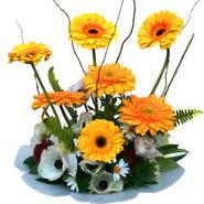 camda gerbera ve mis kokulu kir çiçekleri  Hakkari çiçek gönderme