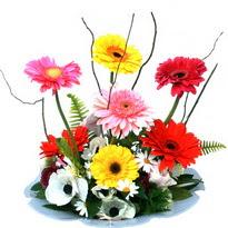 Hakkari ucuz çiçek gönder  camda gerbera ve mis kokulu kir çiçekleri