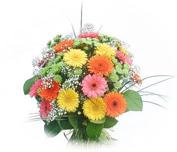 13 adet gerbera çiçegi buketi  Hakkari çiçek siparişi vermek