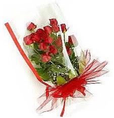 13 adet kirmizi gül buketi sevilenlere  Hakkari internetten çiçek siparişi