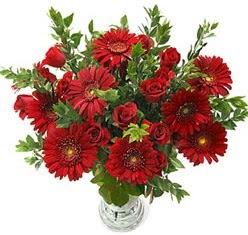 5 adet kirmizi gül 5 adet gerbera aranjmani  Hakkari ucuz çiçek gönder