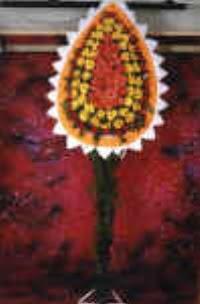 Hakkari çiçekçi telefonları  dügün açilis çiçekleri  Hakkari çiçek satışı