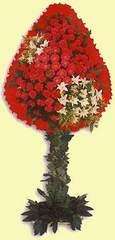 Hakkari çiçek yolla  dügün açilis çiçekleri  Hakkari hediye sevgilime hediye çiçek
