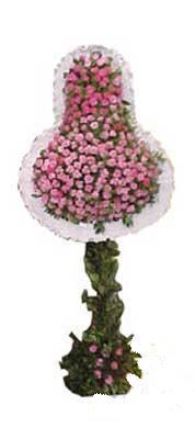 Hakkari çiçek , çiçekçi , çiçekçilik  dügün açilis çiçekleri  Hakkari çiçekçiler