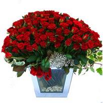 Hakkari internetten çiçek satışı   101 adet kirmizi gül aranjmani