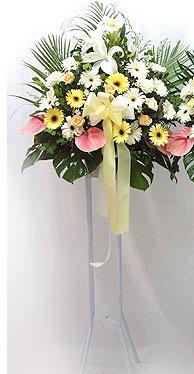 Hakkari çiçek siparişi vermek   perförje çiçegi dügün çiçekleri