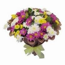 Hakkari çiçek gönderme  Mevsim kir çiçegi demeti