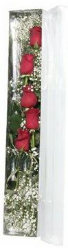 Hakkari çiçekçi mağazası   5 adet gülden kutu güller