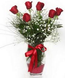 7 adet gülden cam içerisinde güller  Hakkari uluslararası çiçek gönderme