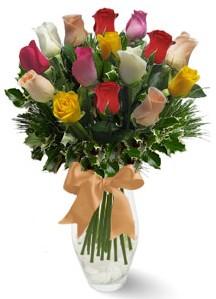 15 adet vazoda renkli gül  Hakkari çiçek siparişi sitesi
