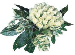Hakkari çiçekçiler  9 Beyaz gül Özel kisiler için