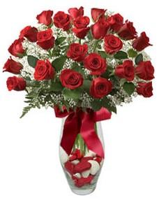 17 adet essiz kalitede kirmizi gül  Hakkari çiçek servisi , çiçekçi adresleri