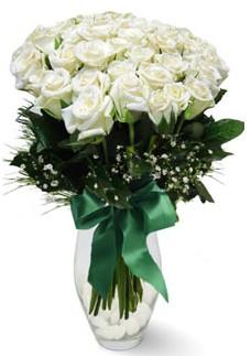 19 adet essiz kalitede beyaz gül  Hakkari internetten çiçek satışı