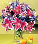 Hakkari çiçek servisi , çiçekçi adresleri  Sevgi bahçesi Özel  bir tercih