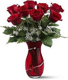 Vazo içinde 8 adet kirmizilar içinde güller  Hakkari çiçekçiler