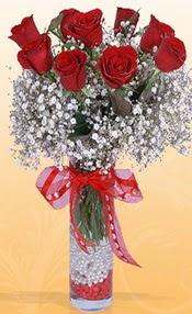 9 adet kirmizi gül cam yada mika vazoda  Hakkari çiçek servisi , çiçekçi adresleri