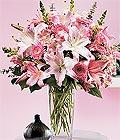 Hakkari online çiçekçi , çiçek siparişi  Kazablanka biçme vazoda