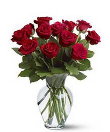 Hakkari İnternetten çiçek siparişi  cam yada mika vazoda 10 kirmizi gül