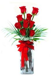 Hakkari çiçek gönderme  9 adet mika yada cam vazoda gül tanzimi