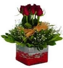 Hakkari çiçek yolla  7 adet mika yada cam vazoda gül tanzimi