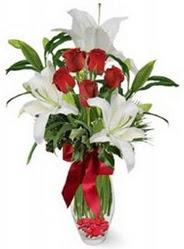 Hakkari internetten çiçek siparişi  5 adet kirmizi gül ve 3 kandil kazablanka