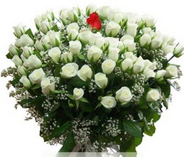 Hakkari çiçek siparişi sitesi  100 adet beyaz 1 adet kirmizi gül buketi