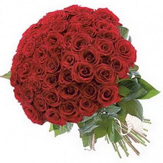 Hakkari kaliteli taze ve ucuz çiçekler  101 adet kırmızı gül buketi modeli