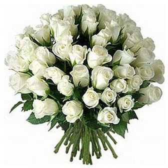 Hakkari çiçek online çiçek siparişi  33 adet beyaz gül buketi