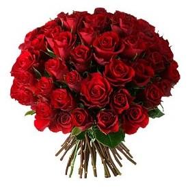 Hakkari çiçek satışı  33 adet kırmızı gül buketi