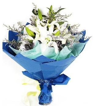 Hakkari 14 şubat sevgililer günü çiçek  4 adet dal kazablankadan görsel buket