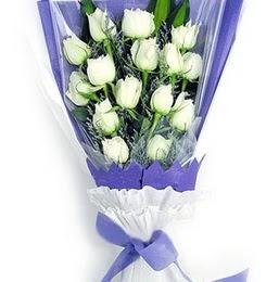 Hakkari hediye çiçek yolla  11 adet beyaz gül buket modeli