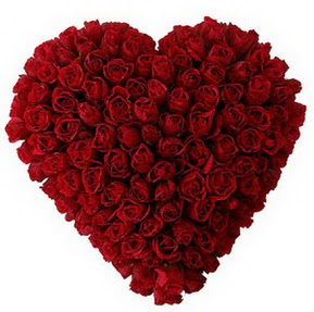 Hakkari hediye çiçek yolla  muhteşem kırmızı güllerden kalp çiçeği