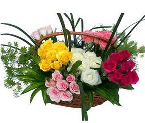 Hakkari çiçek , çiçekçi , çiçekçilik  35 adet rengarenk güllerden sepet tanzimi