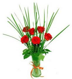 Hakkari çiçek satışı  6 adet kırmızı güllerden vazo çiçeği