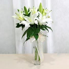 Hakkari 14 şubat sevgililer günü çiçek  2 dal kazablanka ile yapılmış vazo çiçeği