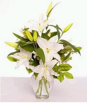 Hakkari çiçek yolla  2 dal cazablanca vazo çiçeği