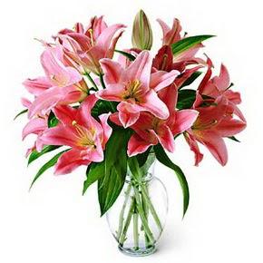 3 dal kazablanka görsel vazosu  Hakkari çiçekçiler