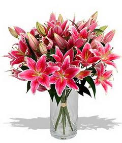 4 dal cazablanca görsel vazosu  Hakkari hediye çiçek yolla
