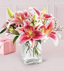 2 dal kazablanka görsel vazosu  Hakkari çiçekçi mağazası