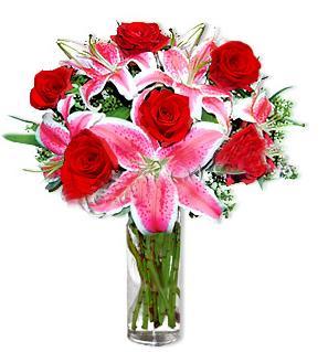 Hakkari çiçek gönderme sitemiz güvenlidir  1 dal cazablanca ve 6 kırmızı gül çiçeği