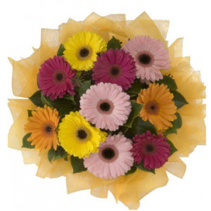 Hakkari çiçek yolla , çiçek gönder , çiçekçi   11 adet karışık gerbera çiçeği buketi