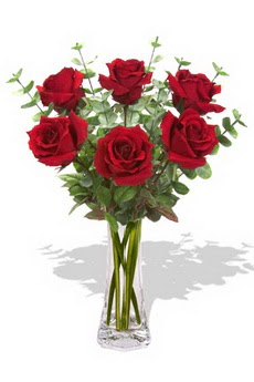 Hakkari hediye çiçek yolla  6 kırmızı gül vazosu