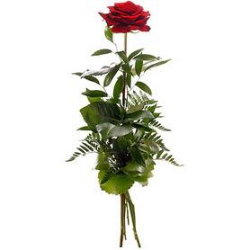 Hakkari yurtiçi ve yurtdışı çiçek siparişi  1 adet kırmızı gülden buket