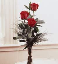 Hakkari çiçek siparişi sitesi  Vazoda 3 adet güzel gül