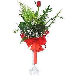 Hakkari 14 şubat sevgililer günü çiçek  Cam vazoda masum tek gül