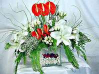 Hakkari çiçek servisi , çiçekçi adresleri  Anthurim Kazablanka  gül
