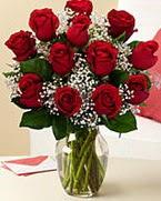 Sevgilime hediye 9 adet 1.ci kalite gül  Hakkari 14 şubat sevgililer günü çiçek