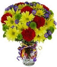 En güzel hediye karışık mevsim çiçeği  Hakkari ucuz çiçek gönder